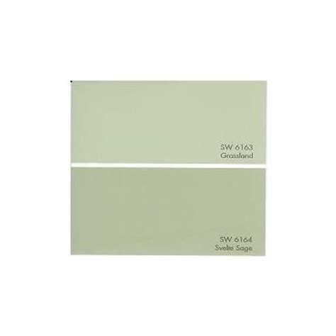 sw6164 svelte paint by sherwin williams possible color for the exterior of our house