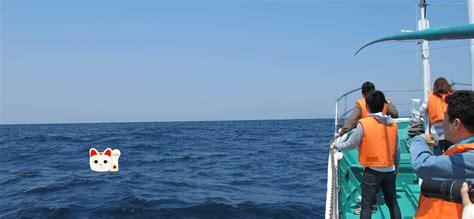 boat tour japan wildlife boat cruises experience japan inside japan tours