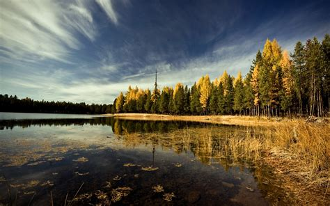 landscape forest lake sky trees leaves wallpapers hd