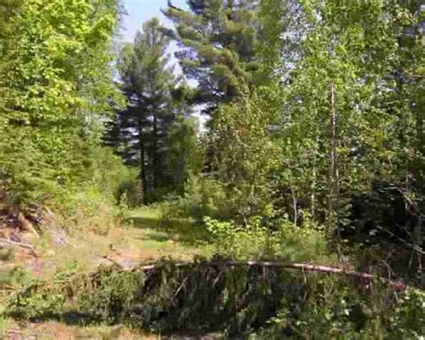 one section of land vacant land for sale landleader moose country 1 4