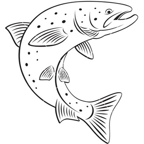 salmon fish coloring page salmon coloring pages