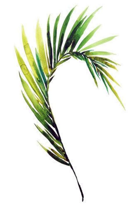 print palm frond tropical leaf by kianamosleystudio artwork leaf