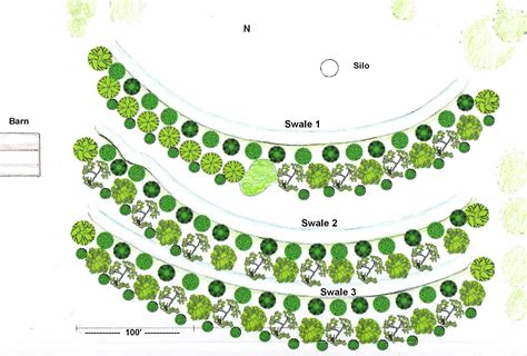 layout of forest nursery projects kansas permaculture institute