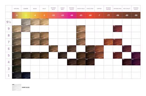 schwarzkopf color instructions igora vibrance