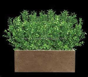 Restoration Hardware Planters by Outdoor Artificial Boxwood Plants Silk Boxwood Plants