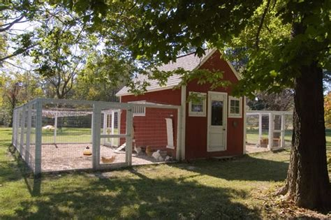 chicken coop in backyard red white chicken coop and yard let s cluck pinterest