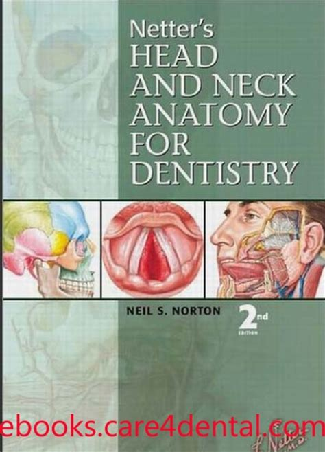 Chapter 9 Head And Neck Anatomy