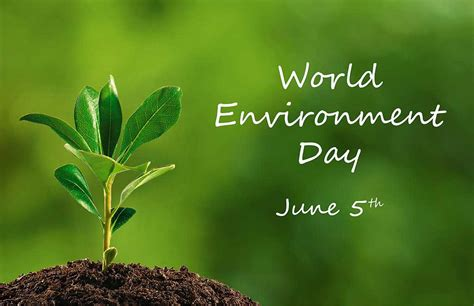 environment day today is world environment day growing strain on planet