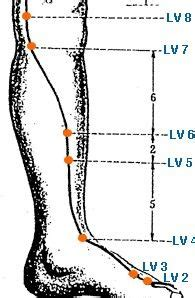 Acupressure Points For Liver Detox by 1000 Images About Infinity Liver Meridian On