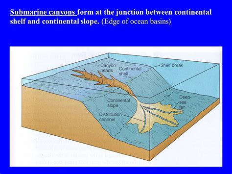 Continental Shelf And Continental Slope by Key Points 1 The Floor Is Mapped By Bathymetry