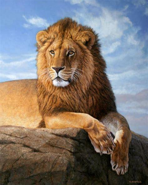 Imagenes Abstractas De Leones | pinturas cuadros lienzos galer 237 a pinturas al 243 leo de leones