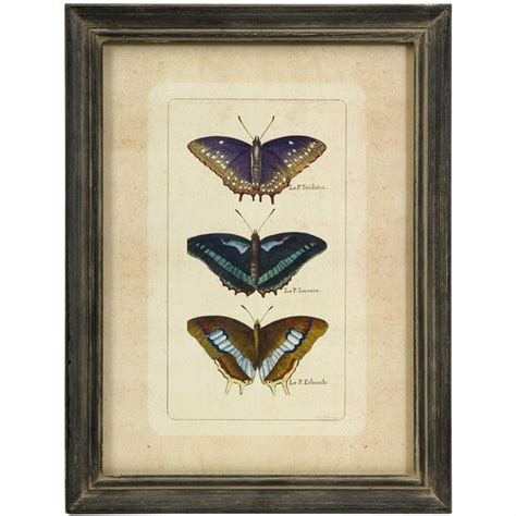 imax home decor imax corporation butterfly collection wall art set of 3