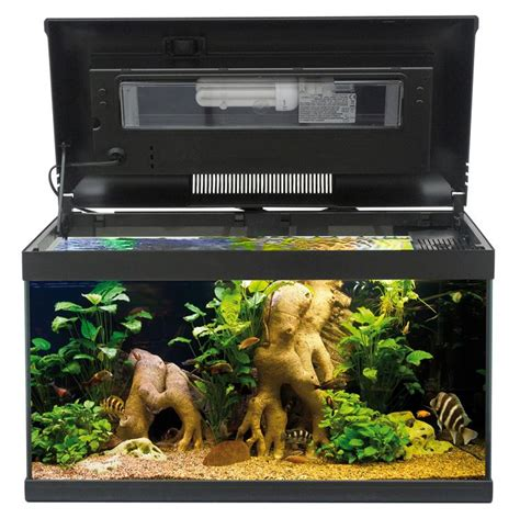 lada per acquario illuminazione acquario cfl lade cfl lade cfl