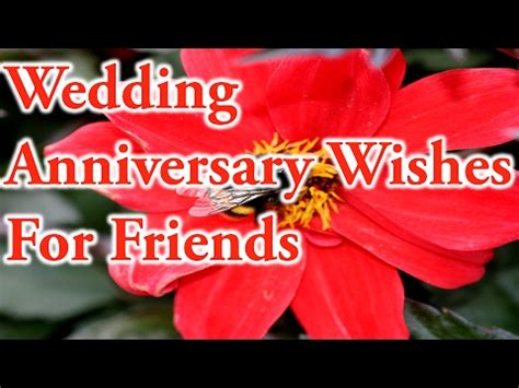 Wedding Anniversary Quote For Best Friend by Wedding Anniversary Wishes For Friends Best Quotes