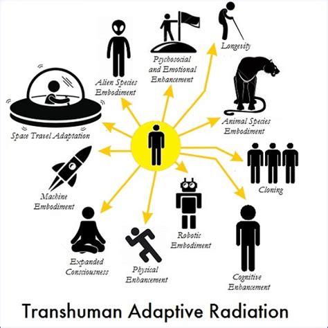 adaptive radiation diagram transhumanism and adaptive radiation