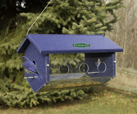 easy view bluebird feeder