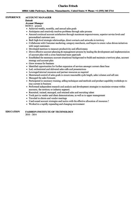 jd templates digital account manager job description template