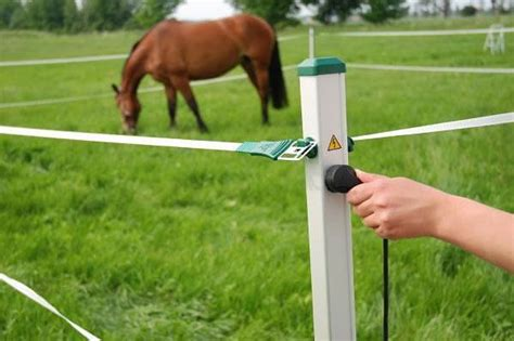 portable electric fence for dogs 1000 ideas about electric fencing on hens cattle farming and poultry