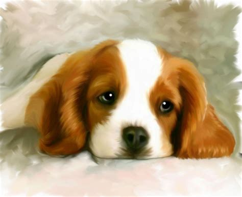 free animal painting animal painting by chetan patel advanced photoshop