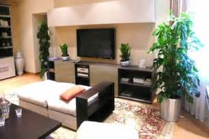Home Decor Plants Living Room Add House Plants To Home Decor To Improve Air Quality