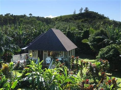 romantic cottage north shore and kauai on pinterest