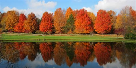 michigan color tour when to go peak times for fall color tours across
