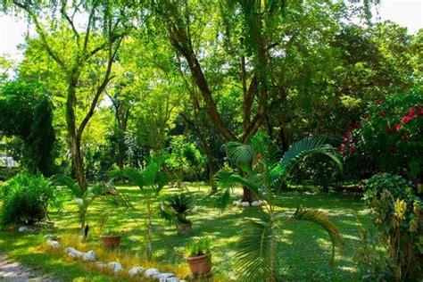 hotel el bosque cop 225 n ruinas honduras picture of el bosque hotel copan ruinas tripadvisor