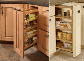 Pull Out Shelving For Kitchen Cabinets Pull Out Cabinet Cliqstudios Com Traditional Kitchen