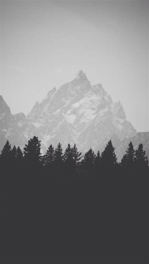 Winter Mountain Peak Pine Forest Line iPhone 6 Plus HD