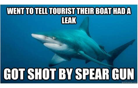 Shark Attack Meme - meme monday the 25 funniest shark memes complex which