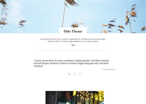 tumblr themes install free oslo tumblr