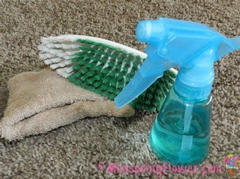 how to clean vomit off couch how to naturally clean vomit off carpet or furniture plus