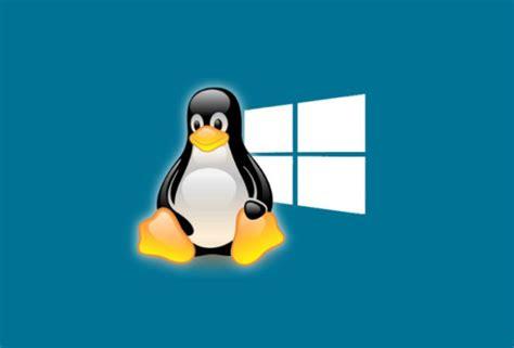 linux  windows  merece la pena tener  ordenador  software libre lifestyle cinco dias