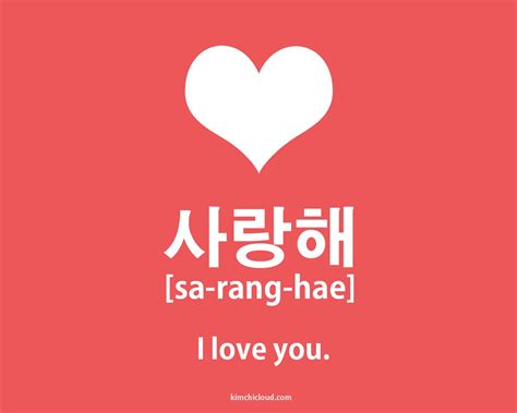 imagenes to say i love you 사랑해 how to say i love you in korean kimchi cloud