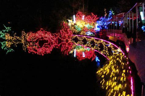 stanley park lights bright nights in stanley park