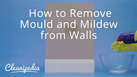 how to remove a wall how to remove mould and mildew from walls youtube
