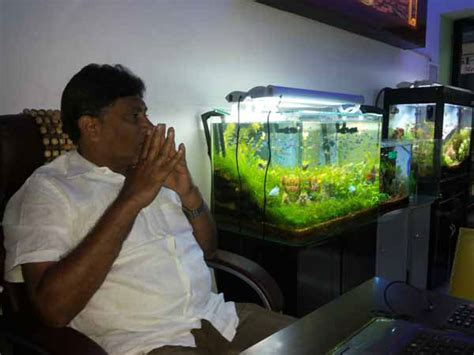 aquarium design in chennai aquarium design india