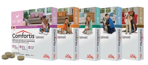 comfortis plus trifexis for dogs flea prevention animal clinic