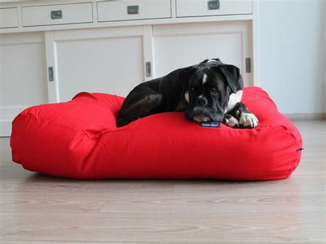 red dog bed dog s companion 174 dog bed red dog beds by dog s companion 174
