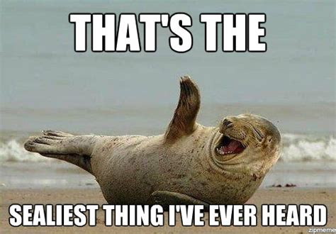 Laughing Hard Meme - laughing seal weknowmemes generator
