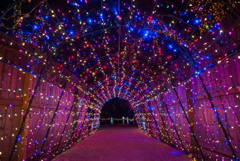 magic winter lights dallas houston holidays a ton of family citypass scrapbook