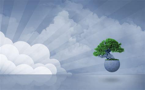 imagenes zen hd wallpapers box bonsai zen tree backgrounds wallpapers hd