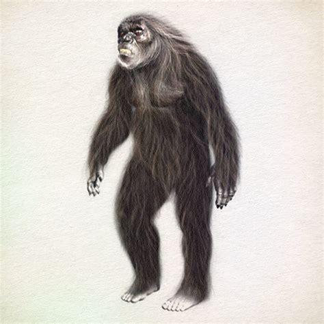 bigfoot types bigfoot411