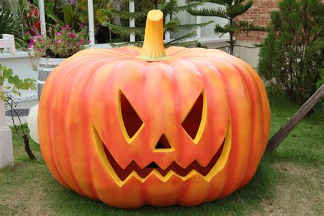 pumpkin design ideas pumpkin carvings and templates - Pumpkin Designs