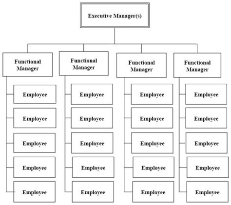 functional organizational chart template organization structures in project management pm hut