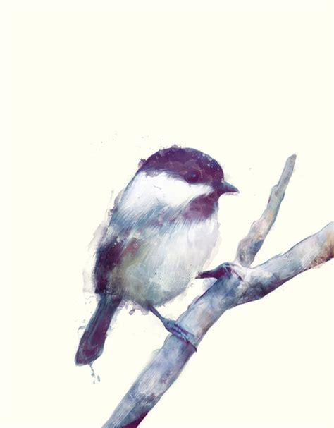 incre 237 bles y elegantes ilustraciones animales de amy hamilton