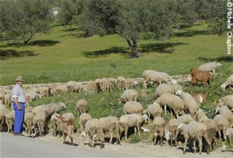 imagenes de la vida rural y urbana periana comarca axarqu 237 a m 225 laga andaluc 237 a espa 241 a