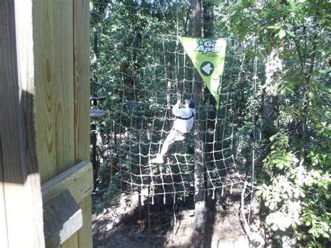 go ape tarzan swing tarzan swing picture of go ape rockville tripadvisor