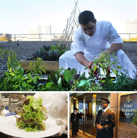 Vegetable Garden Restaurant Four Seasons Hotel Adds New Rooftop Vegetable Garden As A
