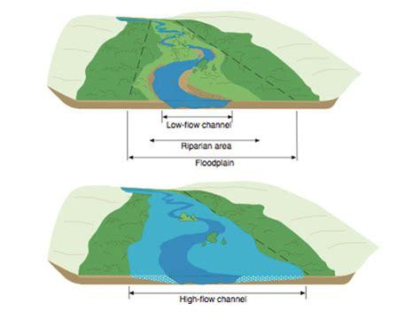 diagram of a floodplain floodplain management ashokan streams